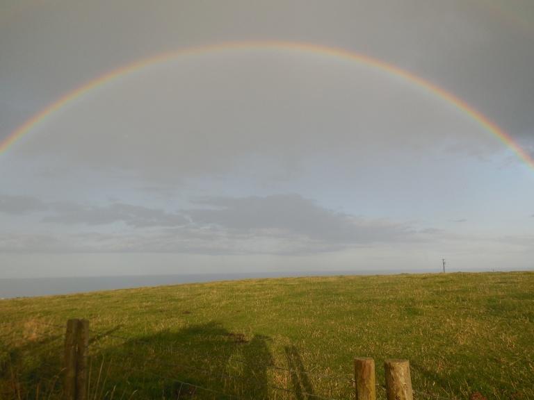 Rainbow - Travellingminstrel #
