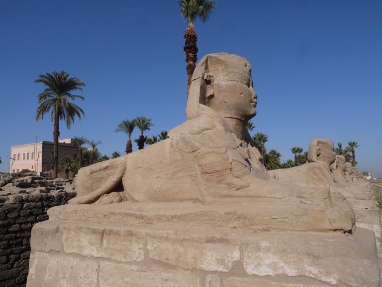 Sphinx - Travellingminstrel #