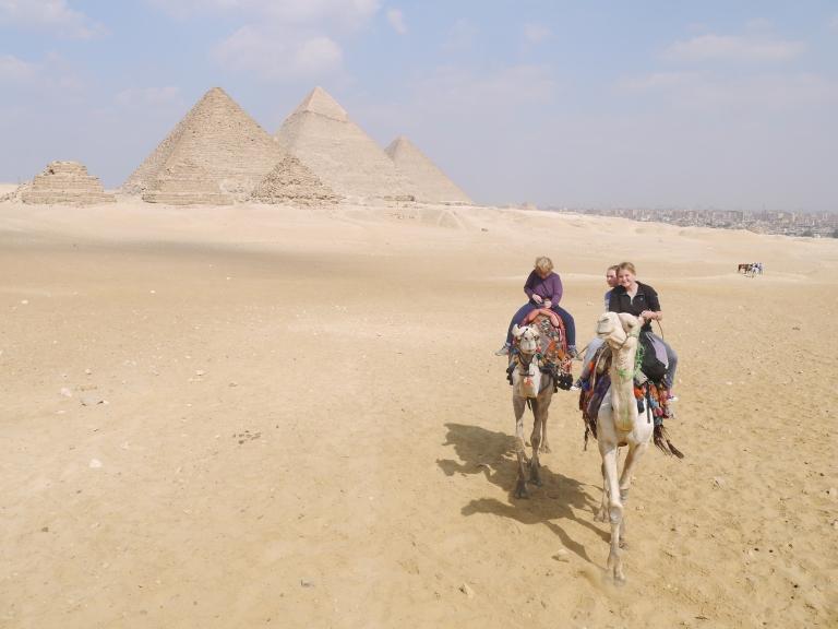 Our lazy camel - Travellingminstrel #