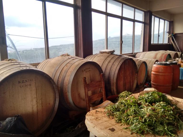 Wine barrels - Travellingminstrel #
