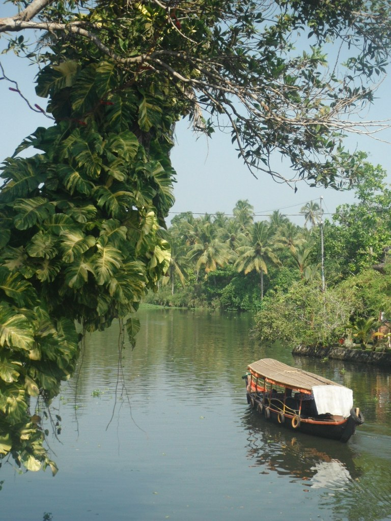 The backwaters or Kerala - Travellingminstrel #