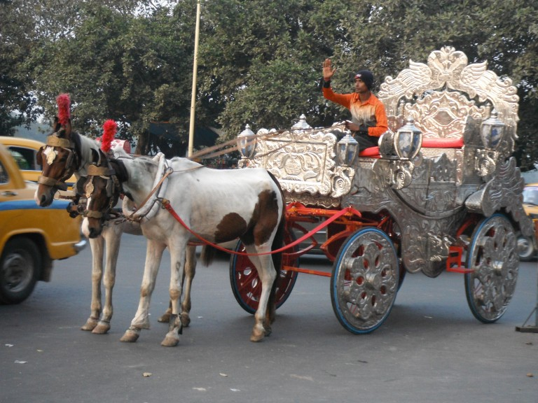 Horse carriages - Travellingminstrel #