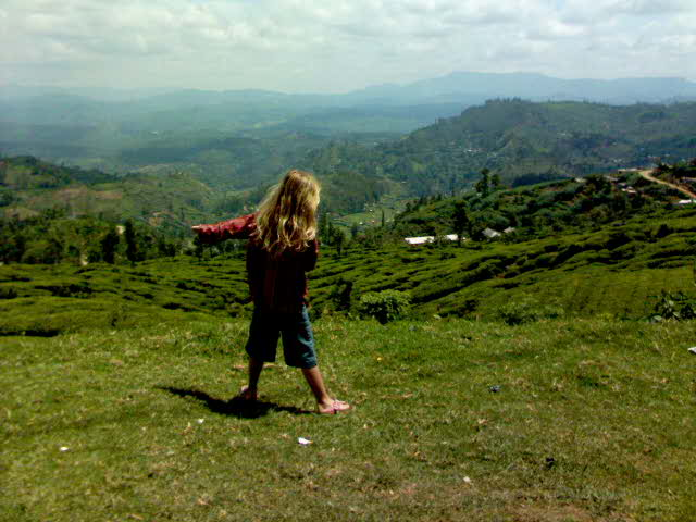 View in Nuwara  Eliya - Travellingminstrel #
