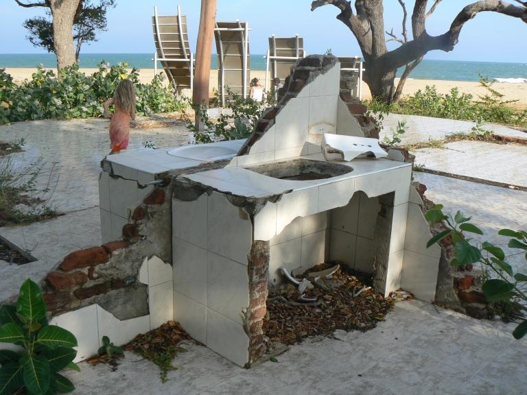 Tsunami  - Travellingminstrel #
