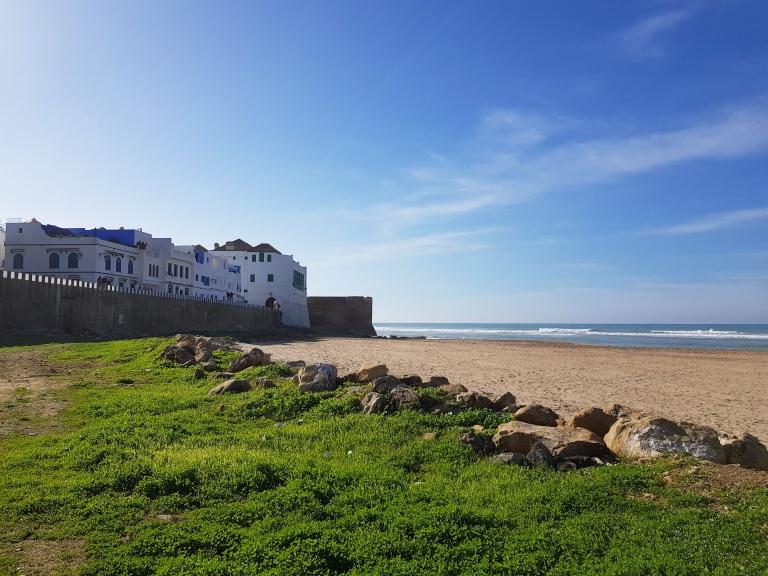 grass:beach